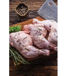 Κοτόπουλο (88)